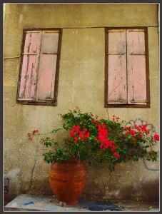 אשר גיבל, חלום החלונות הוורודים, כרם התימנים, 2009
