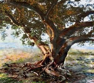 איסמאיל אבקרוב, עץ