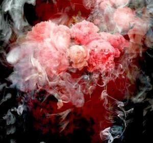 ליקה רמתי, הנפש מעשנת את גוף העורקים חוסמת בשצף וורדים