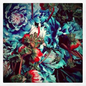 ליקה רמתי, ים של פרחים ואהבה