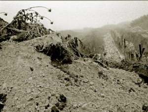 אשר גיבל, יסודות לחומה האקוסטית