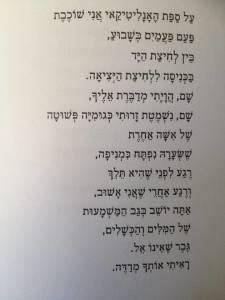 מירי רנדל הבר האנליטיקאי תקין